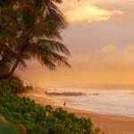 Team Volcom Europe Hawaii Trip