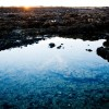 9917_phRobyBragotto_Fuerteventura
