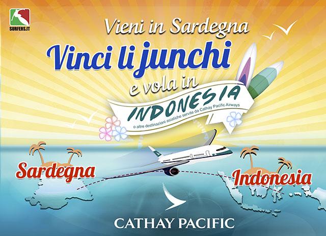 lijuchi-longboard-2015-vinci-indonesia