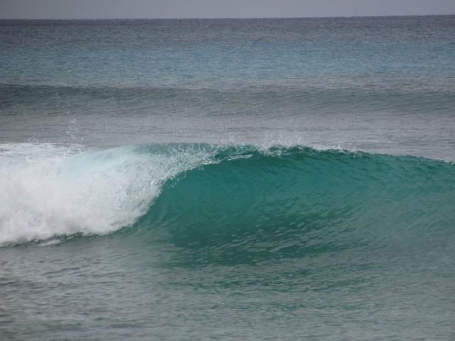 Surf a Barbados 010