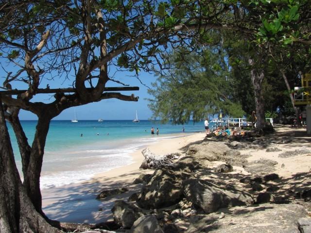 Surf a Barbados 011