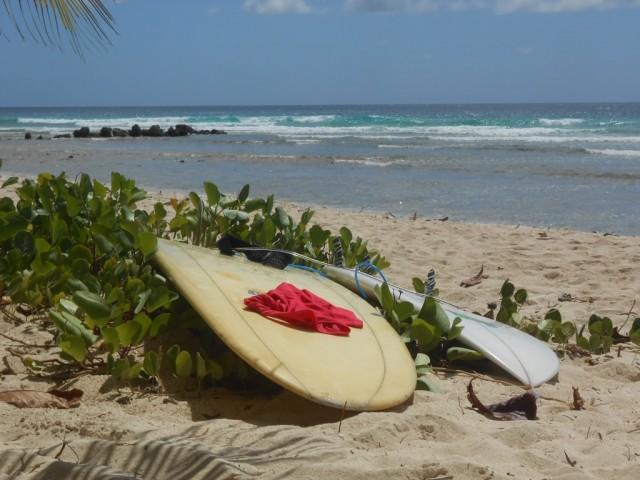 Surf a Barbados 02