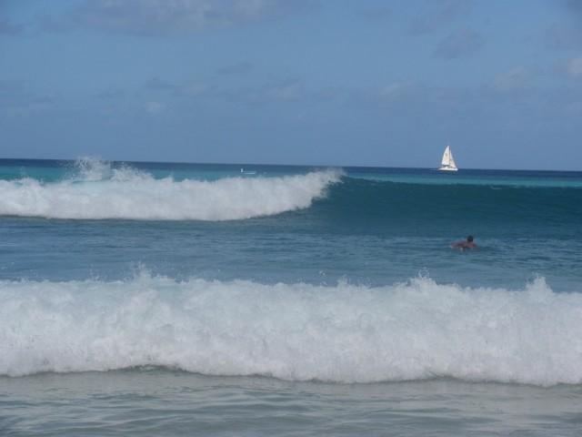 Surf a Barbados 05