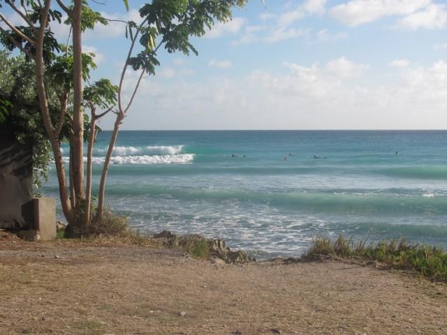 Surf a barbados 04